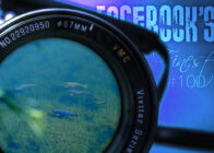 Facebook's Finest #100