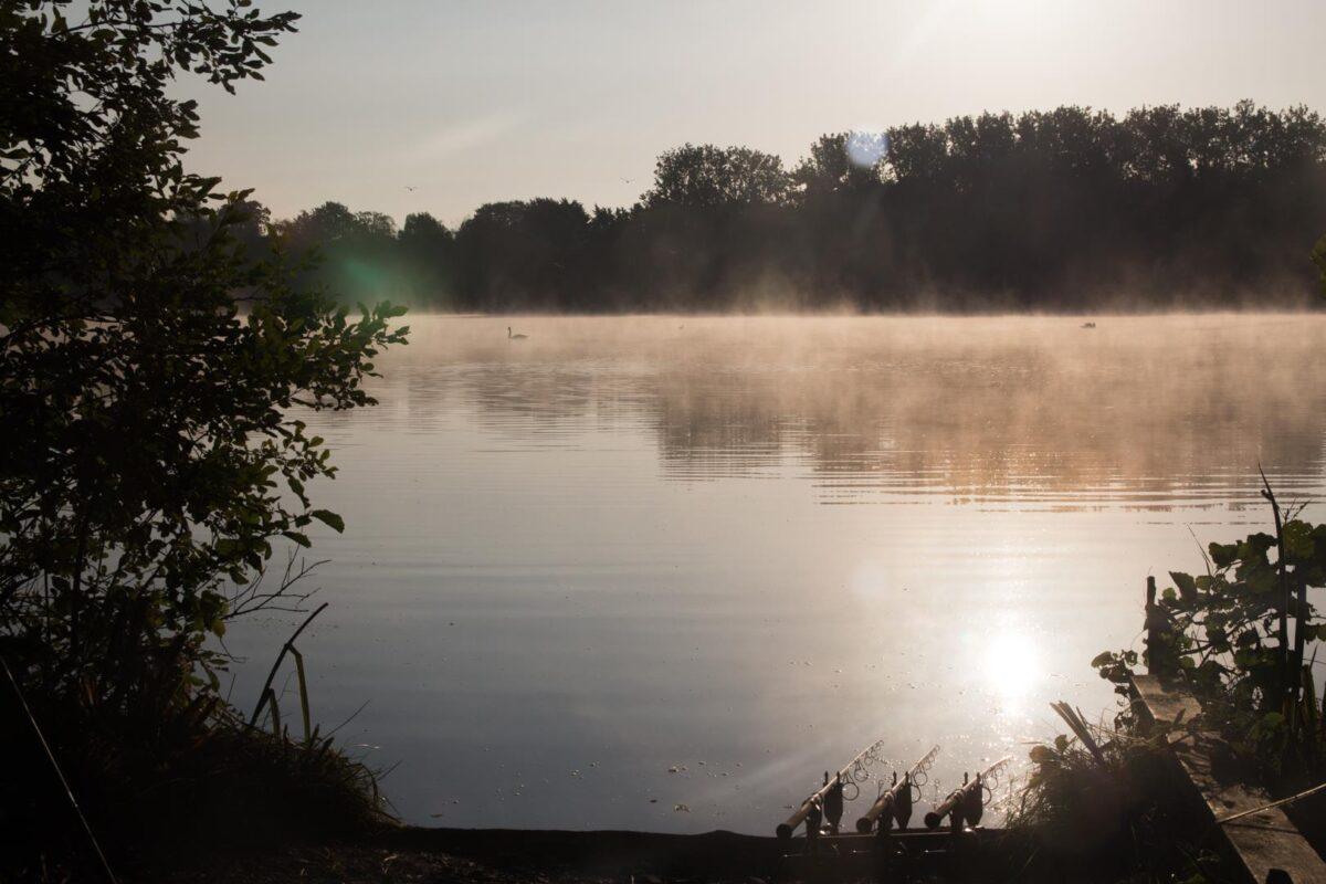 Een zeer druk bevist water in Engeland vraagt om visserij op kleine schone plekjes tussen het wier