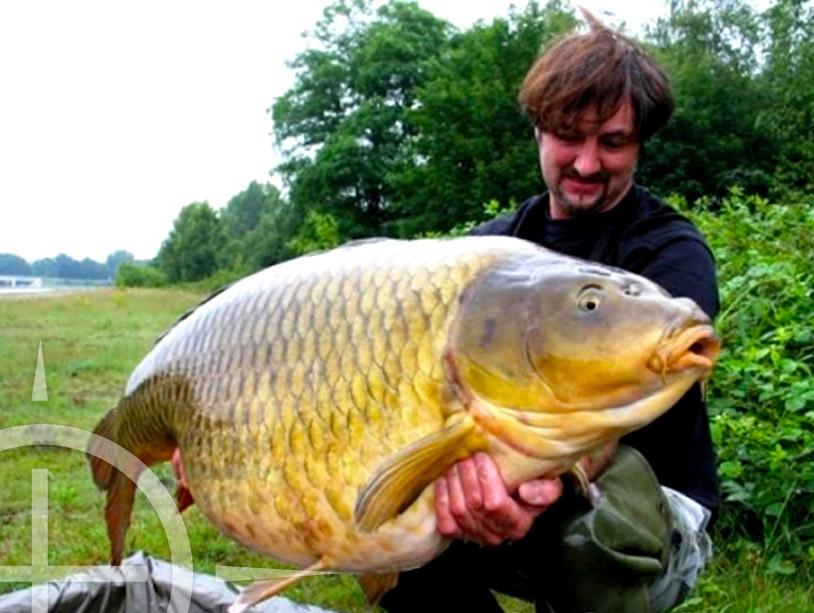 Eddy met Big One op 36.1 kg