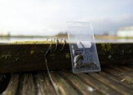 Onderlijnen voor het vissen op karper