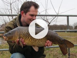 Vlog 9 Frank Avezaat