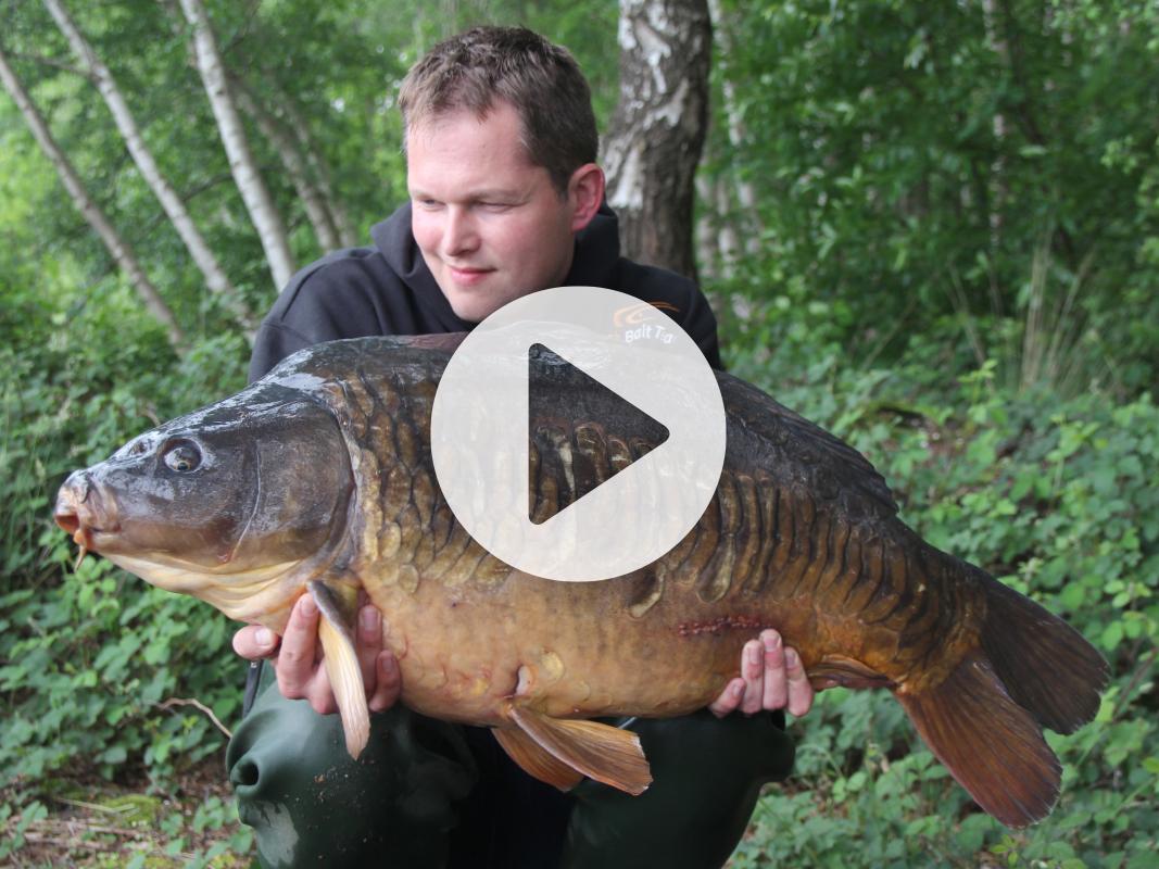 Vlog 12 Frank Avezaat