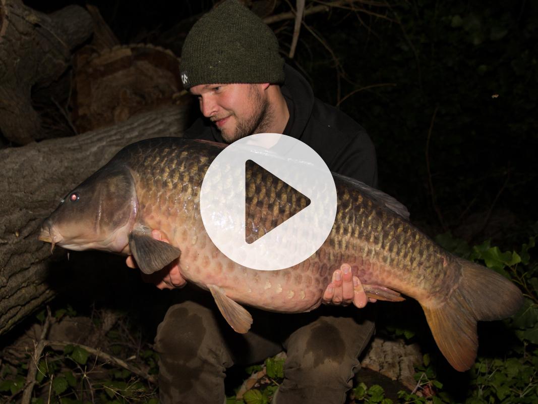 Vlog 14 Frank Avezaat