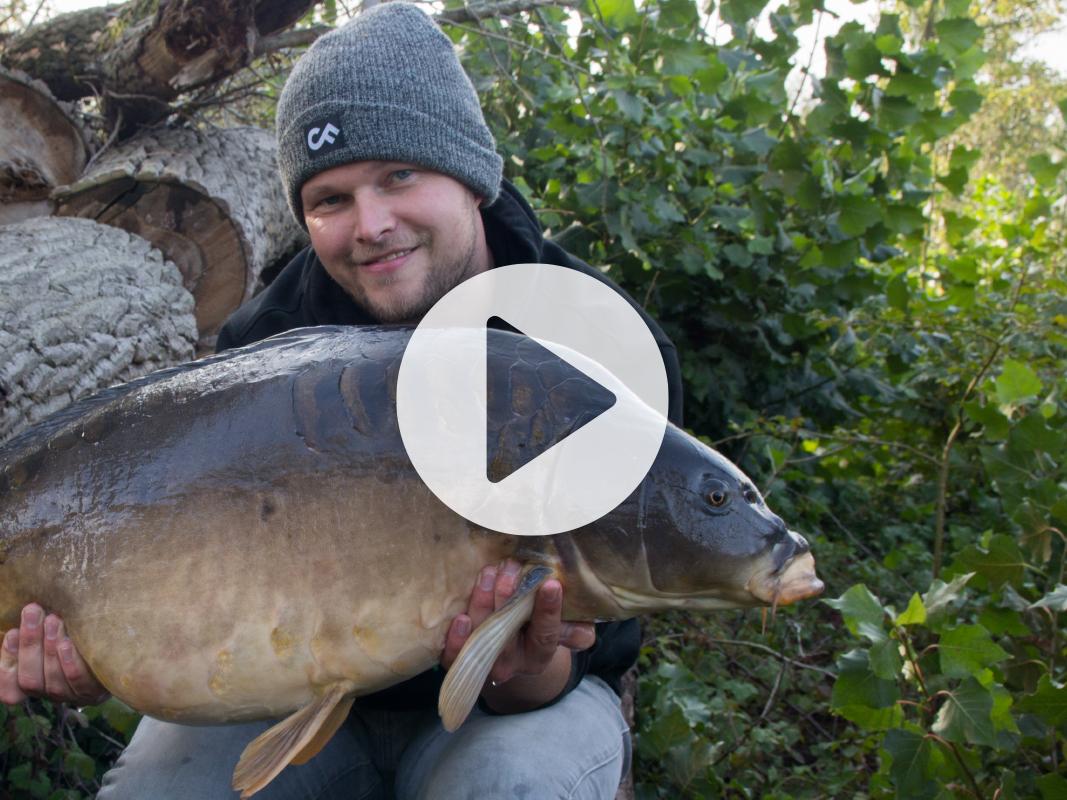 Vlog 15 Frank Avezaat