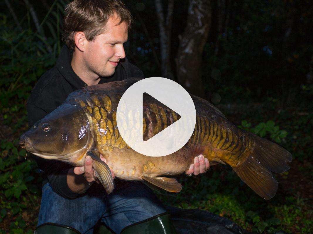 Vlog 1 Frank Avezaat