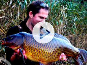 Vlog 2 Frank Avezaat