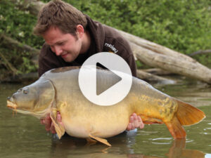 Vlog 4 Frank Avezaat