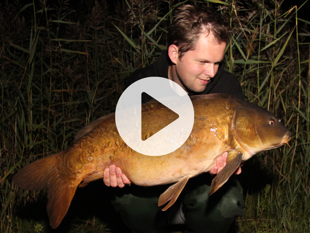 Vlog 5 Frank Avezaat