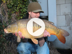 Vlog 6 Frank Avezaat