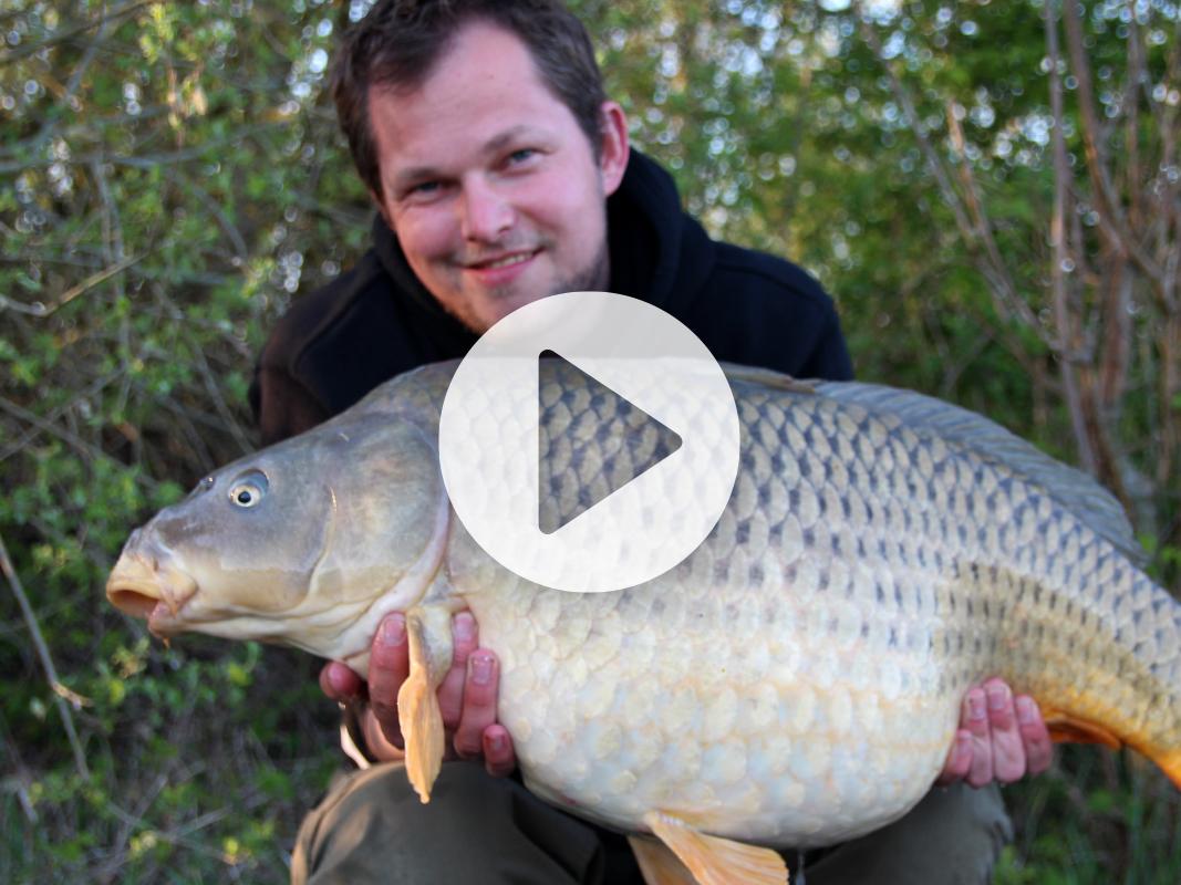 Vlog 7 Frank Avezaat