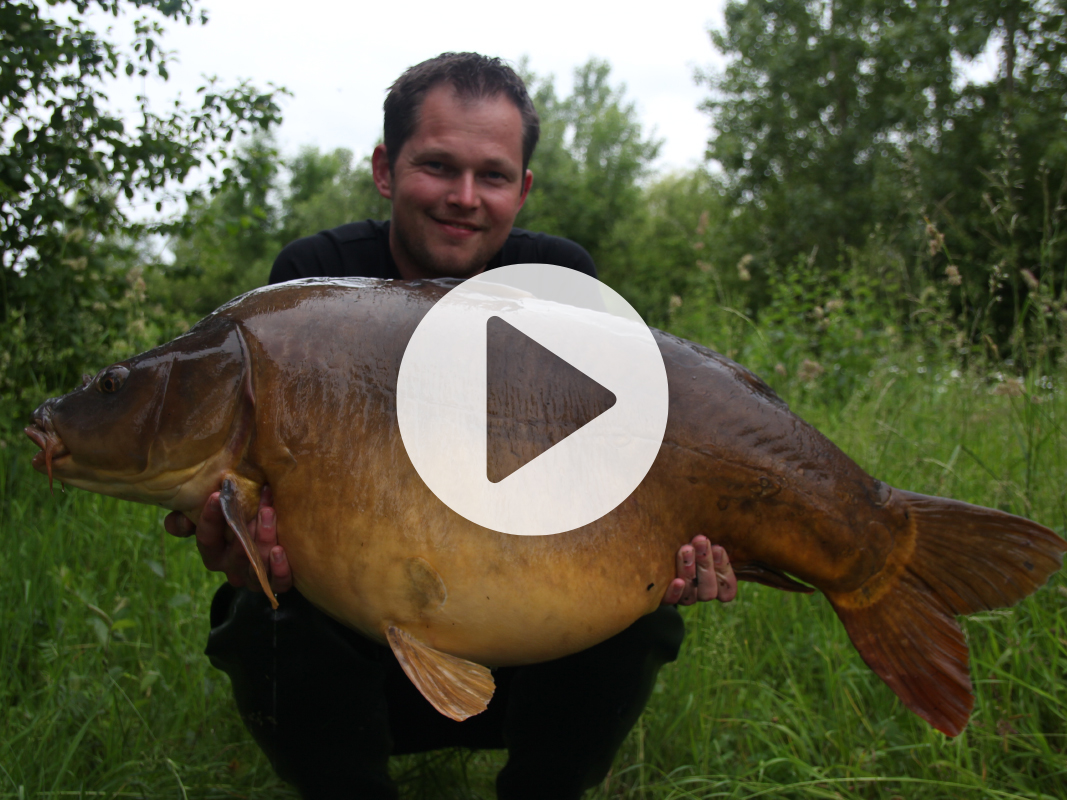 Vlog 8 Frank Avezaat