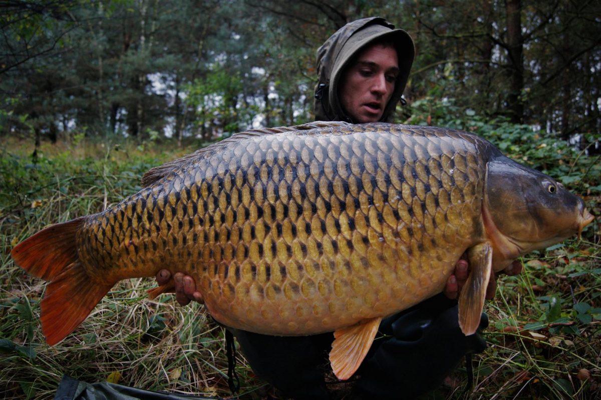 Ian Thiels met zijn eerste vangst van De Grote Schub, toen op 24,4 kg