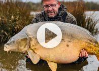 Wintervissen op Ribière met The Carp Specialist!