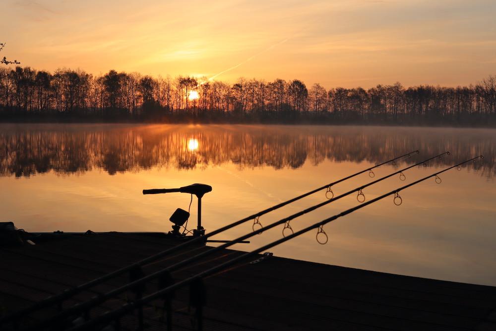 CarpFarm lake