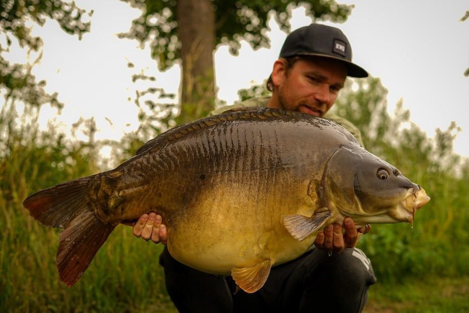 Een vis uit de big five