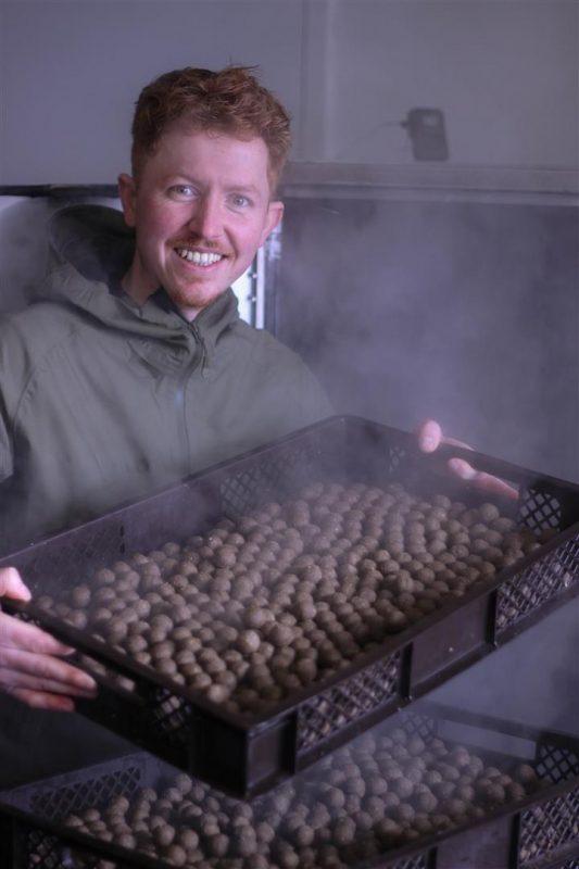 """Insect Based Baits"""": De Black Soldier boillie bestaat voor 1/3 uit insecten!"""