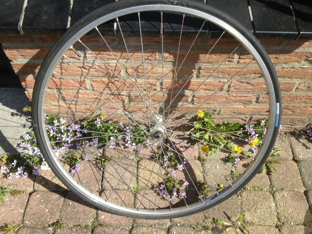 Een (oud) fietswiel trekt veel wier mee
