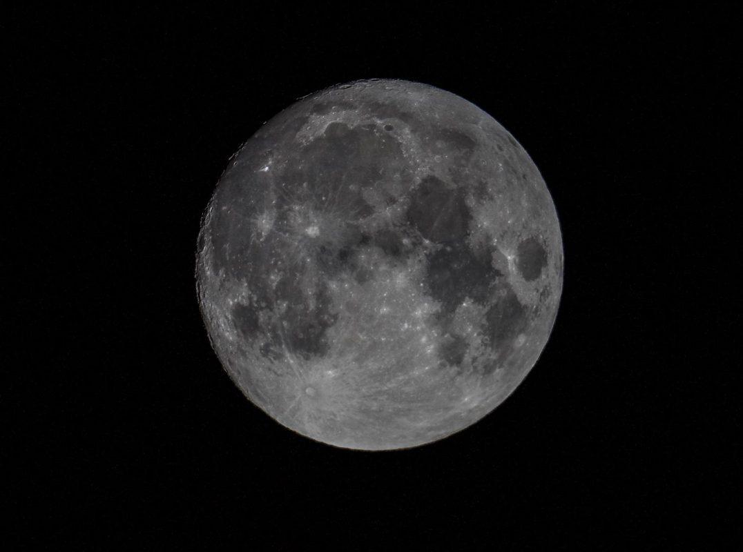 Big Fish Moon