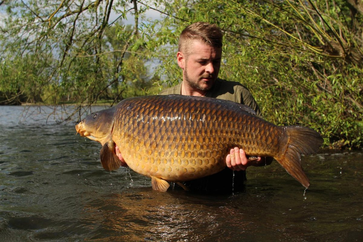 The Burghfield Common